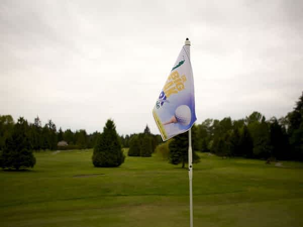 Pin Flags